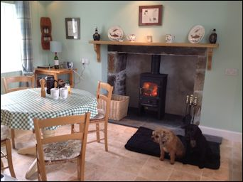 wood burning stove in cottage